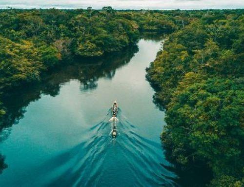 Amazzonia dove è la verità?