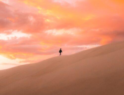 La vita è come il deserto